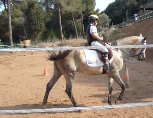 Clases de equitación en Alella. Julio 2013.